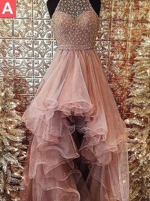 Stylish Ball Gown Halter Sleeveless Asymmetrical Sweep/Brush Train Tulle Dress